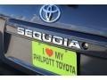 Toyota Sequoia SR5 Magnetic Gray Metallic photo #8