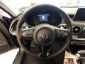 Kia Stinger Premium AWD Aurora Black Pearl photo #16