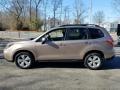 Subaru Forester 2.5i Premium Burnished Bronze Metallic photo #4