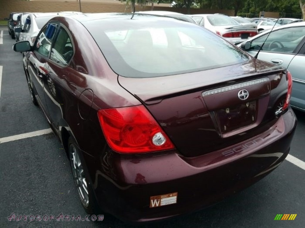 2006 tC  - Black Cherry Pearl / Dark Charcoal photo #3