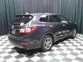 Hyundai Santa Fe GLS Night Sky Pearl photo #6