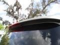 Hyundai Santa Fe Limited Natural Khaki photo #41