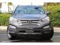 Hyundai Santa Fe Sport AWD Platinum Graphite photo #4