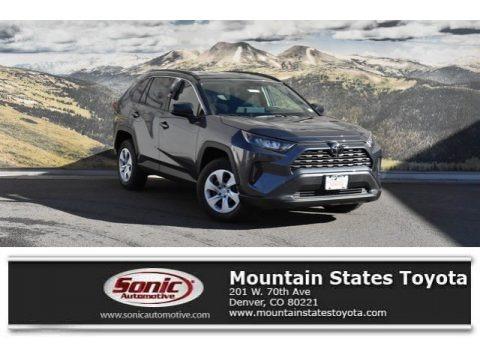 Magnetic Gray Metallic 2019 Toyota RAV4 LE AWD