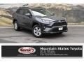 Toyota RAV4 XLE AWD Magnetic Gray Metallic photo #1