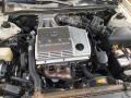 Lexus ES 300 Sedan Crystal White photo #8