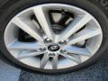 Hyundai Sonata SE Venetian Red photo #7