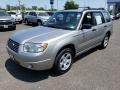 Subaru Forester 2.5 X Crystal Gray Metallic photo #3