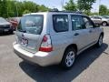 Subaru Forester 2.5 X Crystal Gray Metallic photo #7