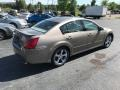 Nissan Maxima 3.5 SE Pebble Beach Metallic photo #5