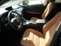 Lexus NX 300h AWD Caviar photo #2
