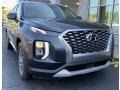 Hyundai Palisade SEL AWD Steel Graphite photo #1