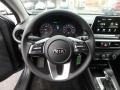 Kia Forte LXS Gravity Grey photo #18