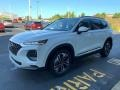 Hyundai Santa Fe SEL 2.0 AWD Quartz White photo #7