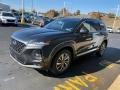 Hyundai Santa Fe SEL AWD Machine Gray photo #7