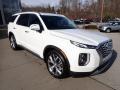 Hyundai Palisade SEL AWD Hyper White photo #3