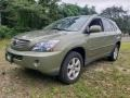 Lexus RX 400h AWD Hybrid Desert Sage Metallic photo #1