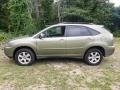 Lexus RX 400h AWD Hybrid Desert Sage Metallic photo #2