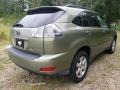 Lexus RX 400h AWD Hybrid Desert Sage Metallic photo #5