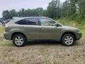 Lexus RX 400h AWD Hybrid Desert Sage Metallic photo #6