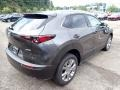 Mazda CX-30 Premium AWD Machine Gray Metallic photo #2
