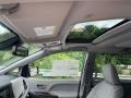 Toyota Sienna XLE AWD Celestial Silver Metallic photo #24