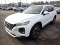 Hyundai Santa Fe Limited AWD Quartz White photo #5