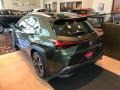Lexus UX 250h AWD Nori Green Pearl photo #4