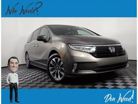 Pacific Pewter Metallic 2021 Honda Odyssey EX-L