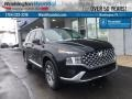 Hyundai Santa Fe SEL AWD Twilight Black photo #1