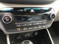 Hyundai Tucson SEL AWD Magnetic Force photo #8