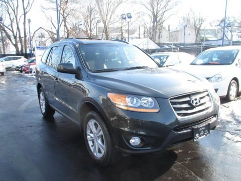 Black Forest Green Metallic 2010 Hyundai Santa Fe SE